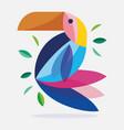 toucan bird feather foliage nature fauna flora vector image
