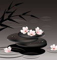 zen stones and cherry flowers vector image vector image