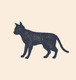 cat silhouette concept design home animals vector image vector image
