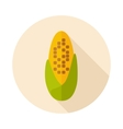 Corncob flat icon with long shadow vector image