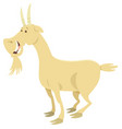 happy goat farm animal character vector image