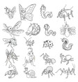 Set of Funny Insects Cartoon Character Line Art vector image