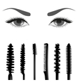 Set of mascara and eyes vector image