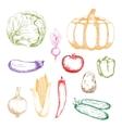 Farm vegetables retro sketch icons vector image