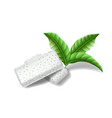chewing pads gum with mint leaves isolated bubble vector image vector image