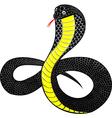cobra vector image vector image