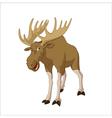 Elk vector image vector image