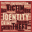 identity theft text background wordcloud concept vector image vector image