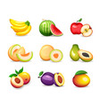 set different tropical fruits isolated on white vector image