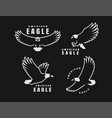 set logos american eagle in flight on a dark vector image vector image