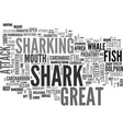 sharking word cloud concept vector image vector image