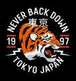 tiger 011 vector image vector image