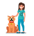 veterinarian doctor examining dog vector image vector image