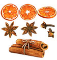 watercolor high quality winter spices and orange vector image vector image