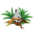A lemur sitting at the chopped wood vector image vector image