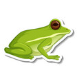 a sticker template with green frog isolated vector image vector image