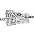 adult toys for maximum enjoyment text word cloud vector image