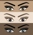 close up beautiful women pair eyes looking vector image vector image