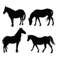 detailed horse silhouettes vector image vector image