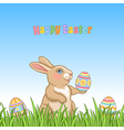 easter grass bunny vector image vector image