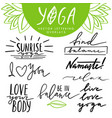 hand drawn lettering overlays set about vector image