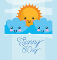 sunny day sun kawaii clouds cartoon vector image