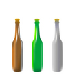 vector illustration beer bottles vector image vector image