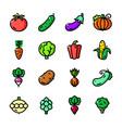 thin line vegatables icons set vector image