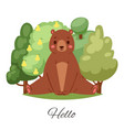 bear hello lettering cartoon vector image vector image