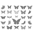 Butterflies graphic silhouettes vector image vector image