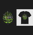 exotic t-shirt and apparel modern design with vector image vector image
