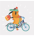 fashion woman with bicycle vector image