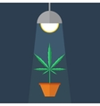 Marijuana grow box vector image vector image