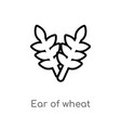 outline ear wheat icon isolated black simple vector image vector image