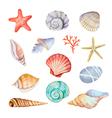Watercolor set of seashells vector image vector image