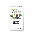 woman planting houseplants in pot girl discussing vector image vector image