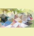 abstract irregular polygonal background pastel vector image vector image