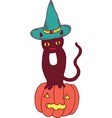 black cat with hat and pumpkin halloween vector image vector image