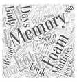Helping You Decide about Memory Foam Mattress Word vector image vector image