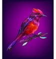 The cute exotic bird head vector image vector image
