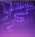 Aurora vector image vector image