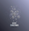 Christmas paper snoflakes vector image vector image