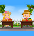 farmers selling fresh fruit vector image