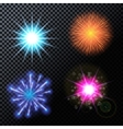Fireworks Salute on a vector image vector image