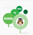 Owl teacher sat on a tree vector image vector image
