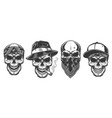 skull in bandana on face vector image vector image