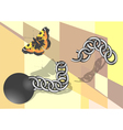 chain and butterfly vector image