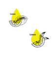 lemon peel oil icon set hand drawn sketch vector image