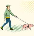 pop art man walking a mini pig of an vector image vector image