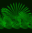 tropical and palm leaves elements as green vector image